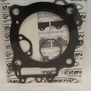 Cometic Top End Gasket Kit Yamaha Rhino Grizzly 660 2002-2008  100mm STD